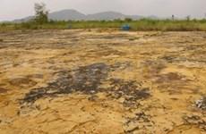 Limpieza de zonas contaminadas por dioxina