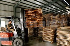 VN: Exportación maderera