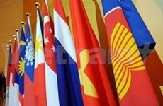 ASEAN saluda comicios en Myanmar
