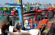 Viet Nam por conservar los océanos mundiales