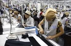 Viet Nam e India por cooperación económica