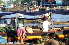 Efectuarán foro cooperativo del delta río Mekong