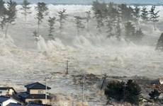 Viet Nam expresa solidaridad a Japón tras terremoto