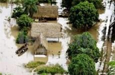 World Vision ayuda a Viet Nam a reducir riesgos naturales
