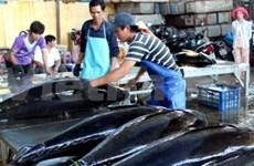 Creada primera empresa mixta para procesamiento de atún