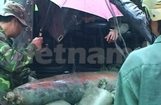 Desactivan gran bomba de pasada guerra en Quang Ngai