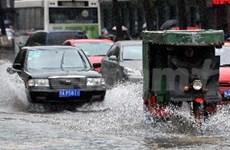 Pérdidas humanas en Vietnam por tormenta Vicente