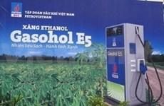 Combustible biológico, cada vez más común en Sudeste de Asia