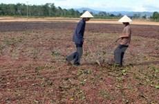 Promueven desarrollo de industria de fertilizantes