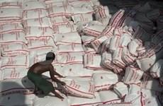 Tailandia venderá 500 mil toneladas de arroz con bajo precio