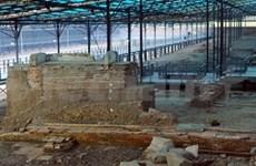 Vietnam capta experiencias de Egipto en museología