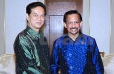 Economía, pilar de relaciones Vietnam – Brunei