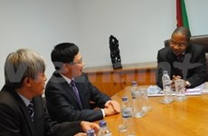 Vietnam y Mozambique robustecen colaboración
