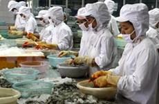 Espera Vietnam decisión justa de Estados Unidos sobre camarón
