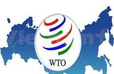 Vietnam con necesidad técnica tras entrada a la OMC