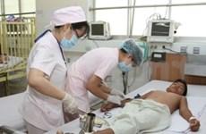 Advierten de brote de dengue en Ninh Binh