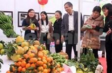 Feria de productos agrícolas abre sus puertas en Hanoi