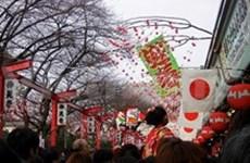 Fiesta cultural cierra Año de Amistad Vietnam-Japón