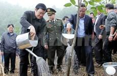 Presidente promueve campaña de reforestación