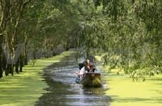 Atractivo turismo experimental en Parque Nacional vietnamita