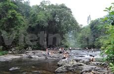 Bac Giang: un recorrido por tesoros naturales, históricos y culturales