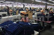 Vietnam promete ser más activo en actividades de WEF