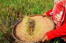 IFAD financia proyecto de reducción de pobreza en Ha Giang
