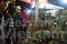 Mercado Vieng, lugar para comprar buena suerte en nuevo año