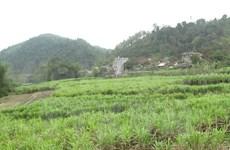 BM ofrecerá préstamo millonario a Vietnam para reducir pobreza