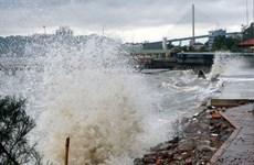 Vietnam fomenta coordinación intersectorial contra desastres