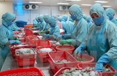 Empresas agro-pesqueras exploran mercados de Finlandia y Norte de Europa