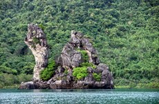 Parque nacional de Bai Tu Long, tesoro en el océano