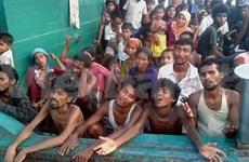 Llama ONU a países sudesteasiáticos permitir desembarco de inmigrantes