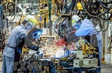 Empresas vietnamitas optimistas ante las adversidades
