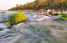 Impresionante belleza de playa de musgo Nam O en ciudad vietnamita