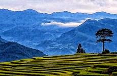 Majestuosos paisajes de terrazas de arroz en la aldea vietnamita de Y Ty