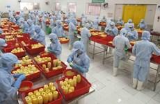 Vietnam fortalece la atracción de inversión extranjera directa