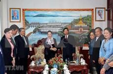 Exhortan a agilizar lazos entre Vientiane y provincias vietnamitas