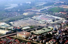 Provincia vietnamita de Vinh Phuc por crear espacios verdes en parques industriales