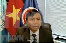 Vietnam reafirma apoyo al proceso de paz en Afganistán