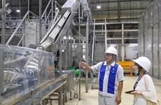 Aumenta inversión vietnamita en el extranjero