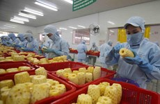 Vietnam por impulsar desarrollo de procesamiento de frutas y verduras