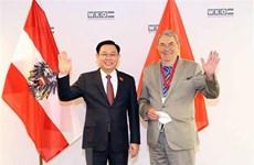 Celebran Foro Empresarial Vietnam - Austria
