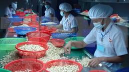 Experimenta fuerte aumento de intercambio comercial Vietnam - Canadá