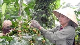 Dirección de la región altiplana hace balance de trabajo y traza tareas para 2016