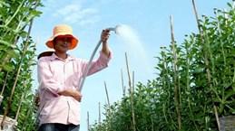 En Laos inauguran centro de servicios técnicos agrícolas con ayuda de Vietnam