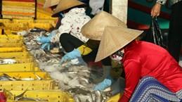 Gran delegación empresarial vietnamita explora mercado singapurense