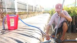 Declara estado de emergencia por salinización provincia vietnamita de Ben Tre