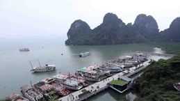 Aclara Vietnam información sobre prohibición a crucero con turistas extranjeros