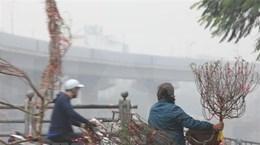 Debaten en Hanoi medidas para mejorar calidad de aire